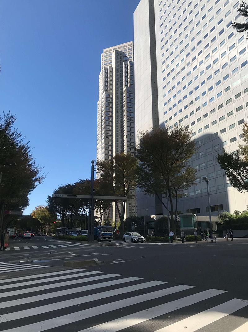 東京都議会の議事堂や都庁を眺めながら気を紛らわせましょう……